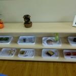Montessori-of-Valencia-Materials